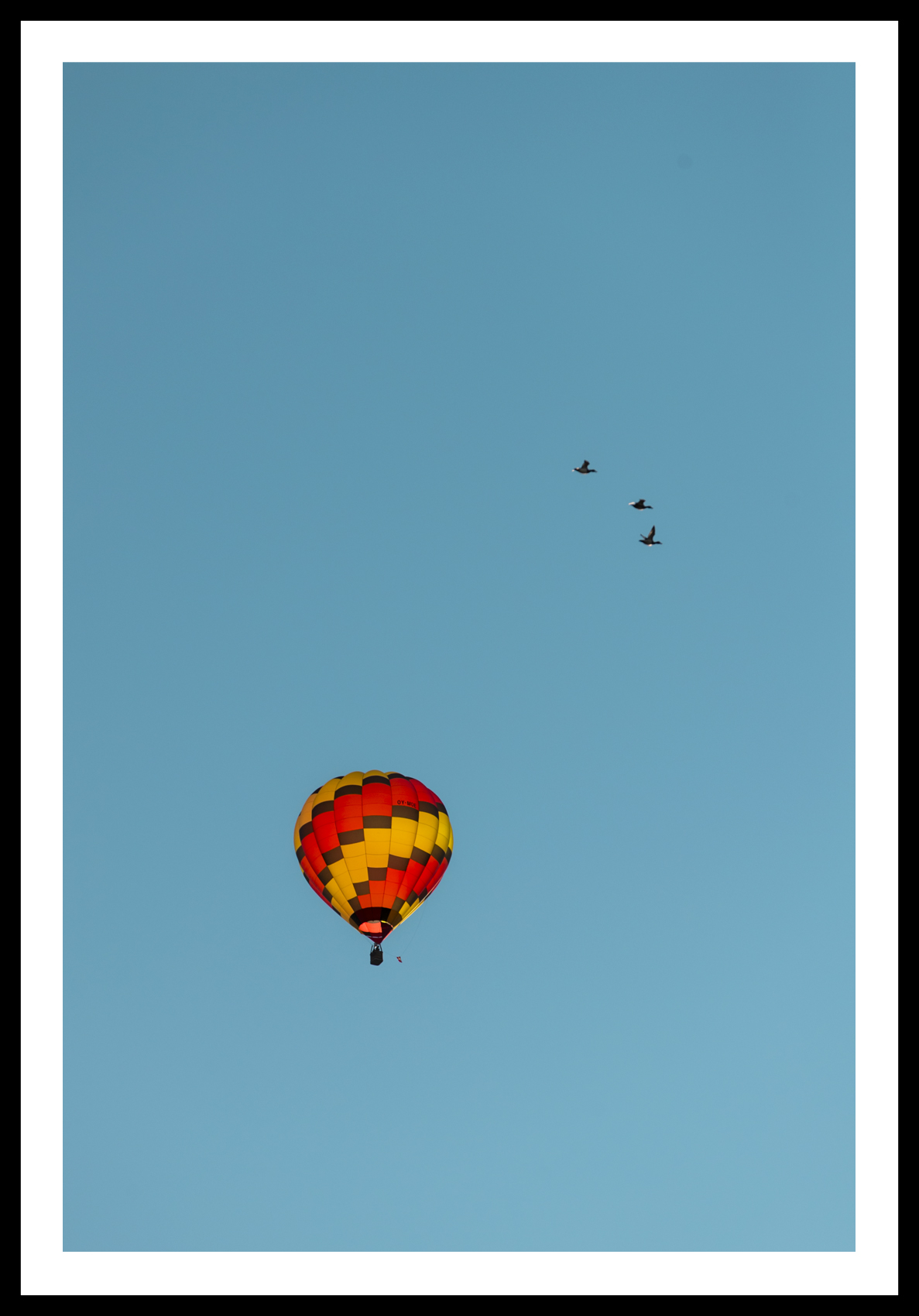 Three Birds & a Balloon